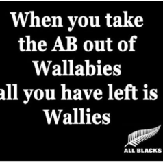 All Blacks vs Wallies